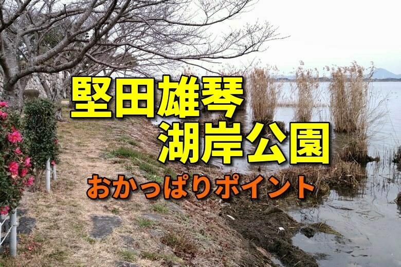 堅田雄琴湖岸公園のおかっぱりバス釣りポイント