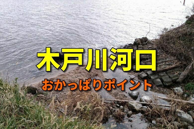 木戸川河口のおかっぱりバス釣りポイント