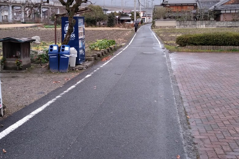 木戸湖岸緑地の前を通る道路
