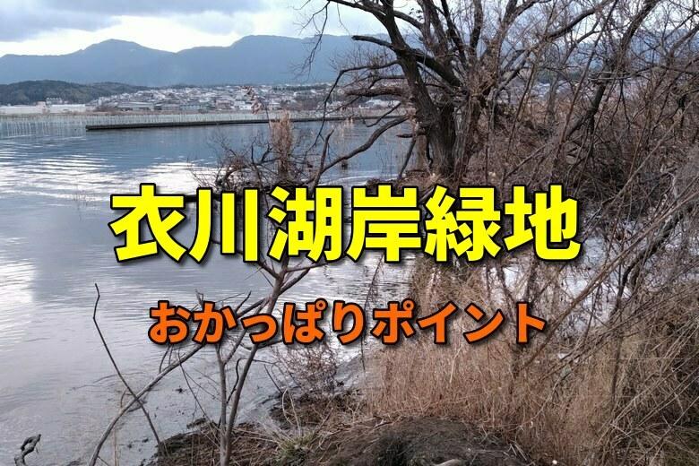 衣川湖岸緑地のおかっぱりバス釣りポイント