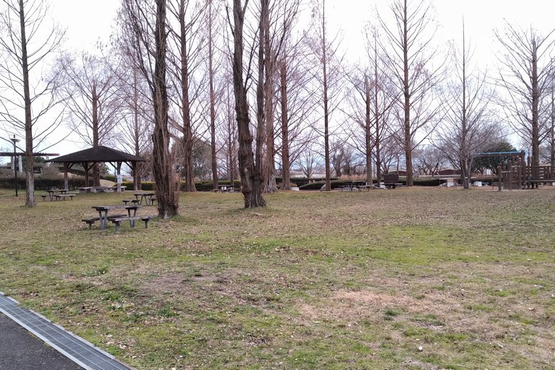 衣川湖岸緑地の公園