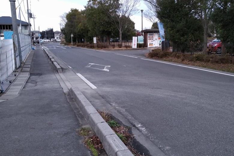 衣川湖岸緑地の前を通る道路