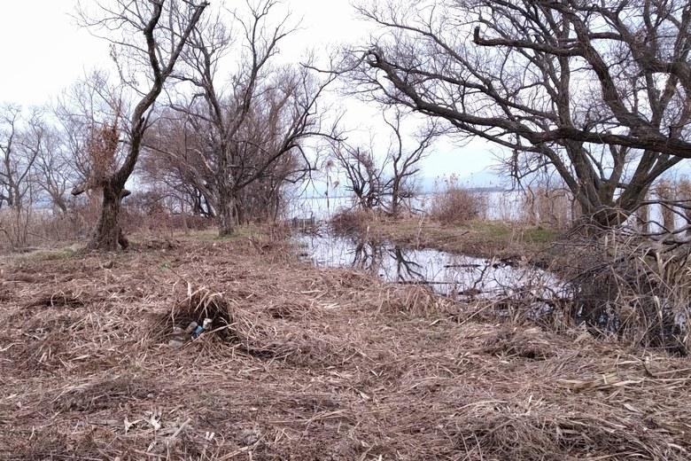 衣川湖岸緑地の先端