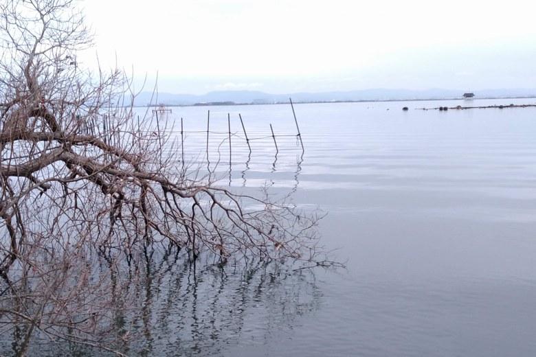衣川湖岸緑地の先端と取水塔