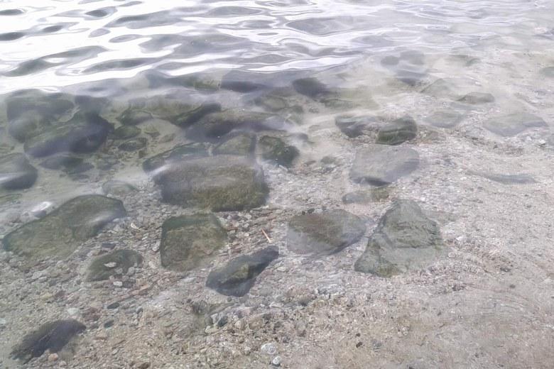 北小松の岩が混じりだしたボトム