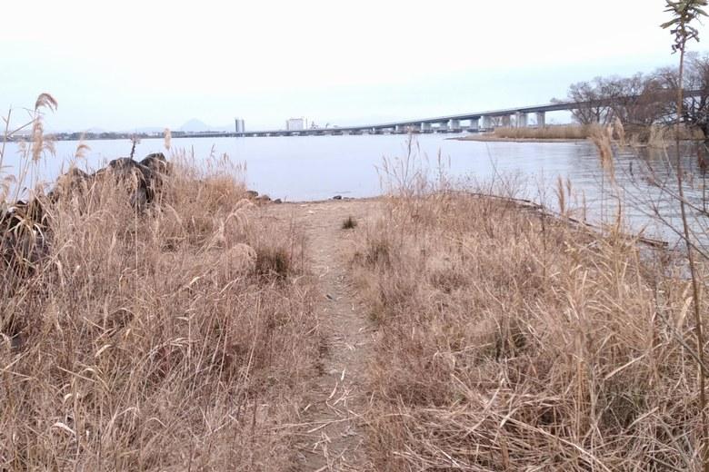 真野川河口の北岸の先端
