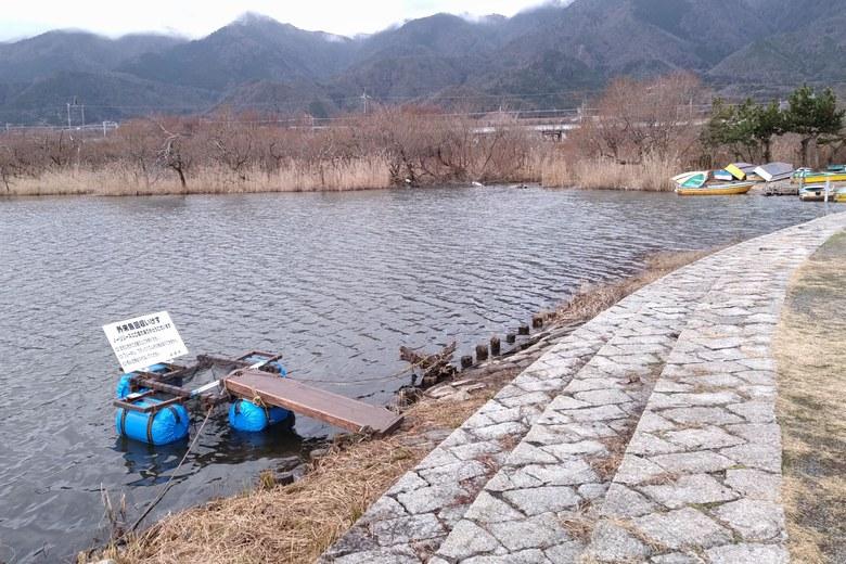 近江舞子の内湖の北の岸辺