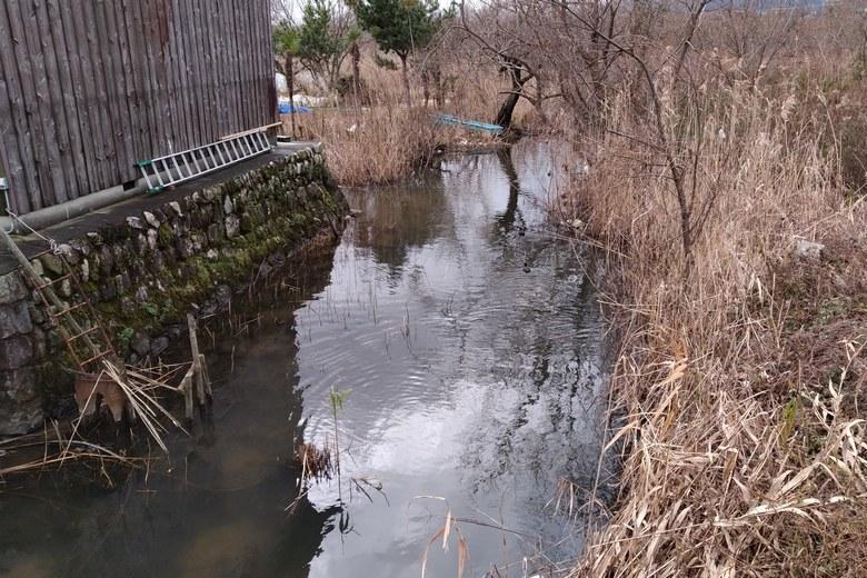 近江舞子の内湖から琵琶湖に流れる水路