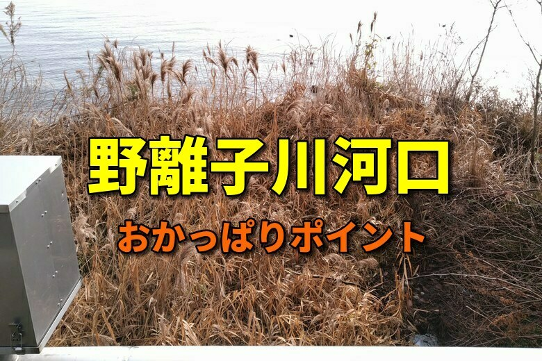 野離子川河口のおかっぱりバス釣りポイント