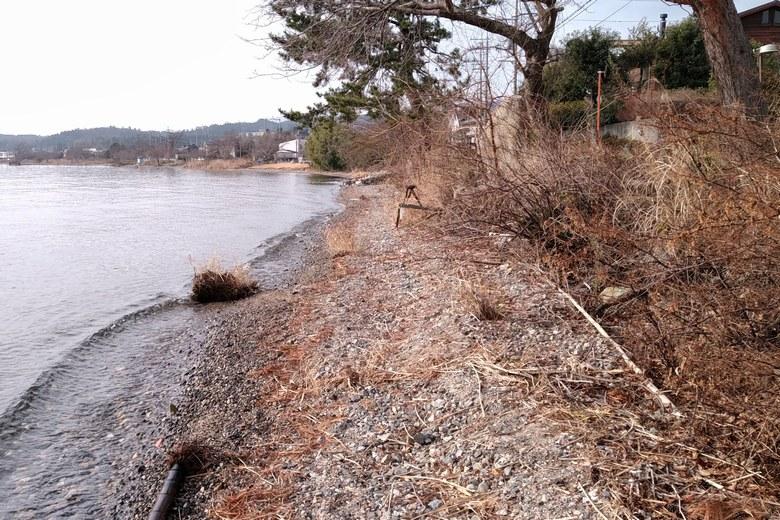野離子川の南側の岸辺