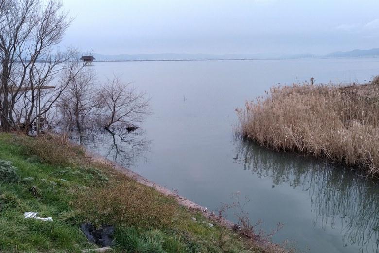 雄琴川の河口