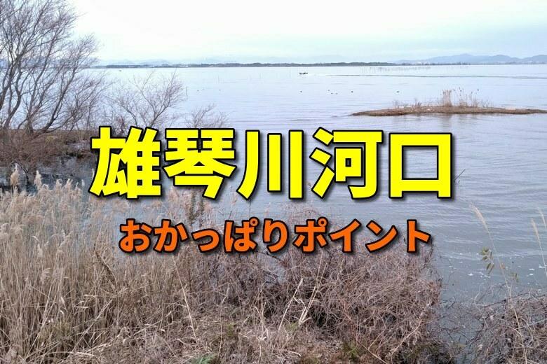 雄琴川河口のおかっぱりバス釣りポイント