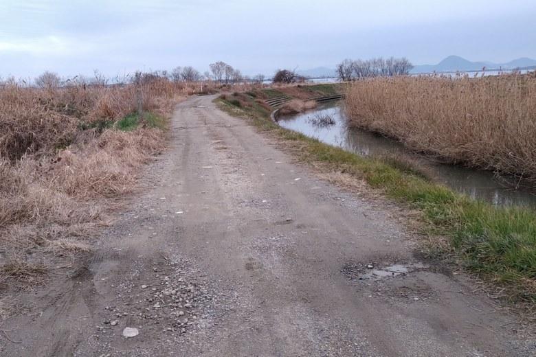 雄琴川の河口へいく未舗装の道