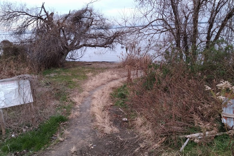 雄琴川河口の先端へ行くあぜ道