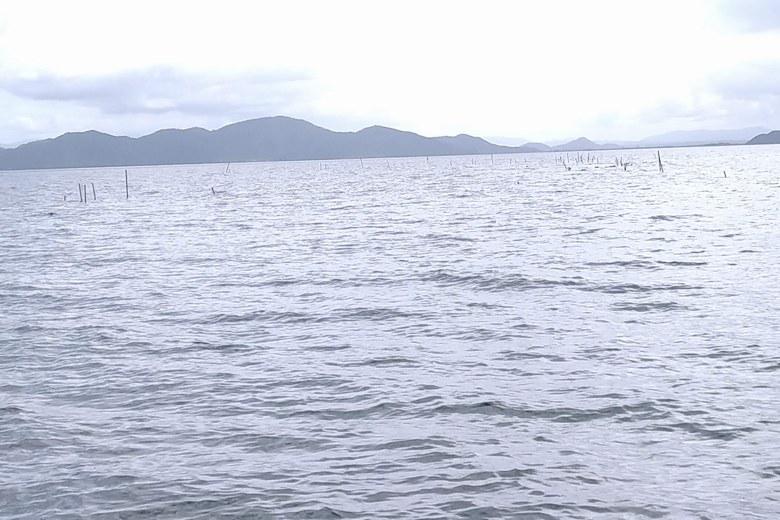 雄松崎の沖のエリ
