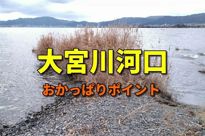 大宮川河口のおかっぱりバス釣りポイント