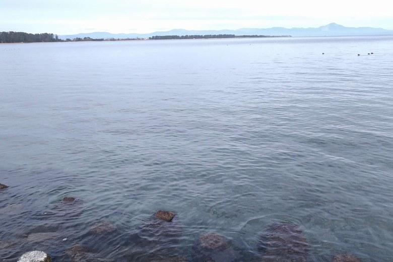 大溝テトラ帯と沖のウィードエリア