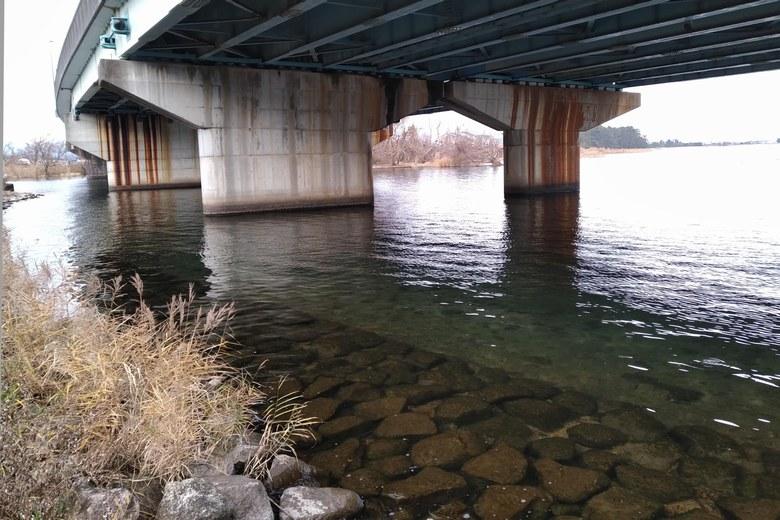 大溝橋の橋脚の下