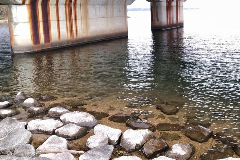 大溝橋の橋脚エリアのボトム