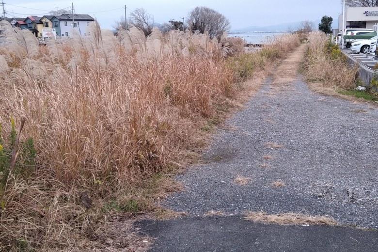 横のあぜ道から御呂戸川の防波堤へ行く