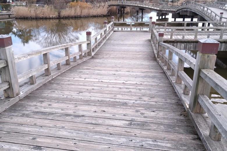 乙女ヶ池の太鼓橋