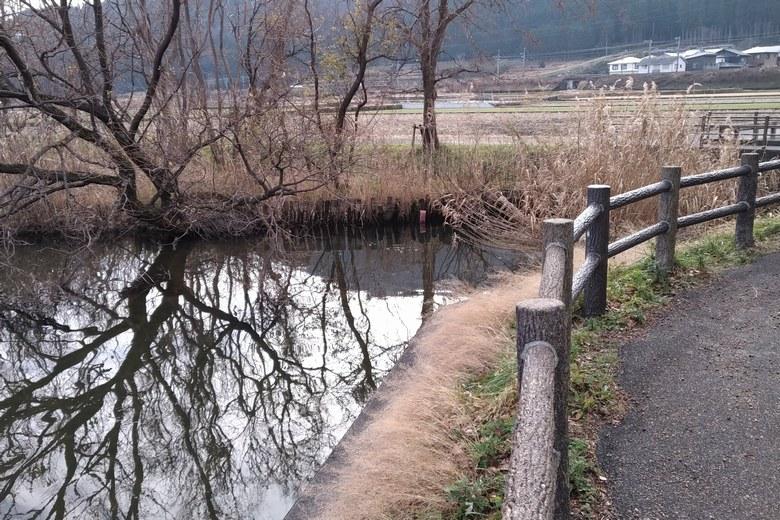 乙女ヶ池の北のインレット