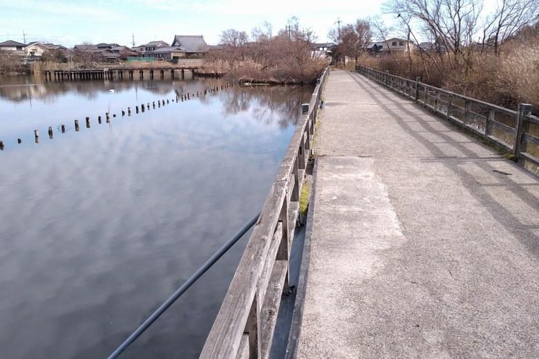 乙女ヶ池の南の桟橋