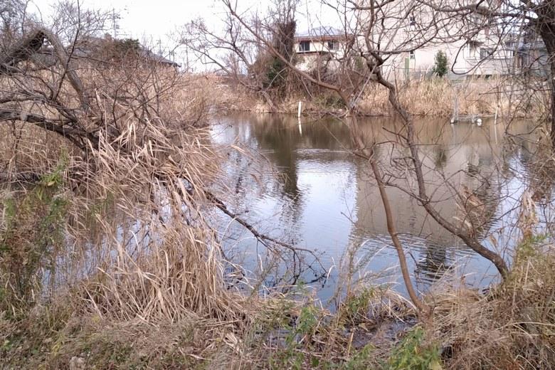 乙女ヶ池と大溝漁港をつなぐ水路