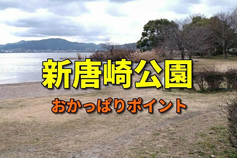 新唐崎公園のおかっぱりバス釣りポイント