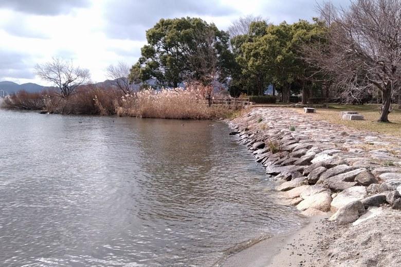 新唐崎公園の石積み護岸とブッシュエリア