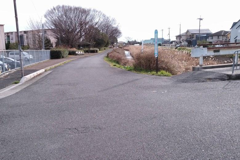 天神川河口へ行く道路