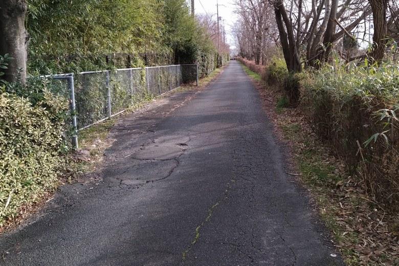 天神川河口湖岸緑地へ行く、細い道