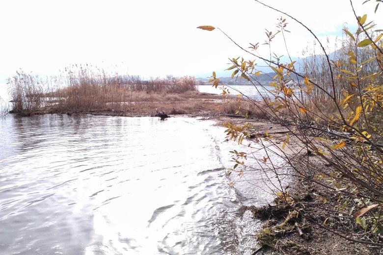 天神川河口の張り出し