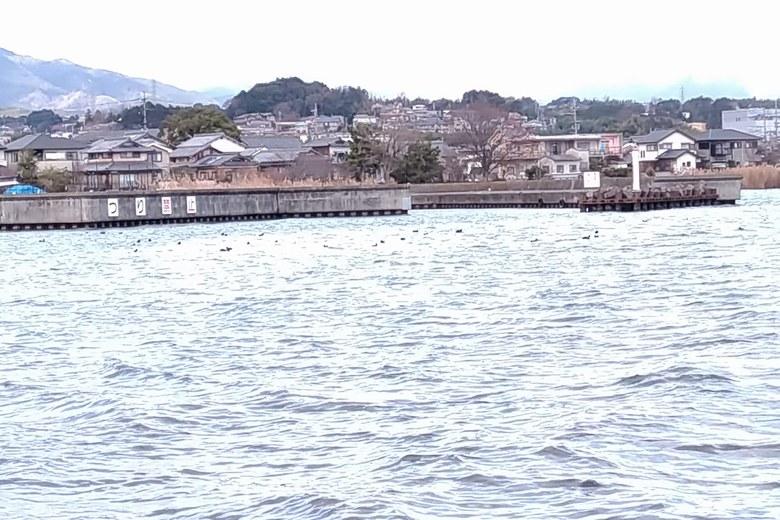 若宮漁港は釣り禁止エリア