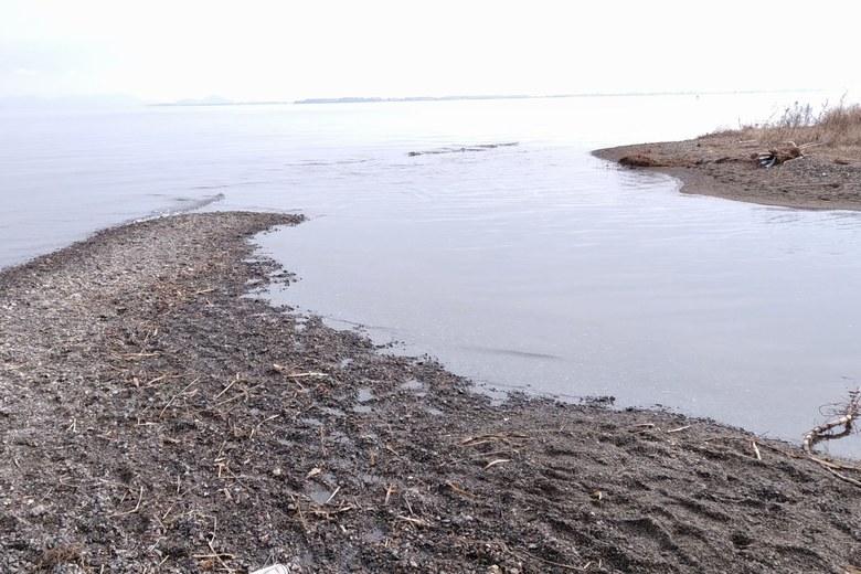 和邇川の河口エリア