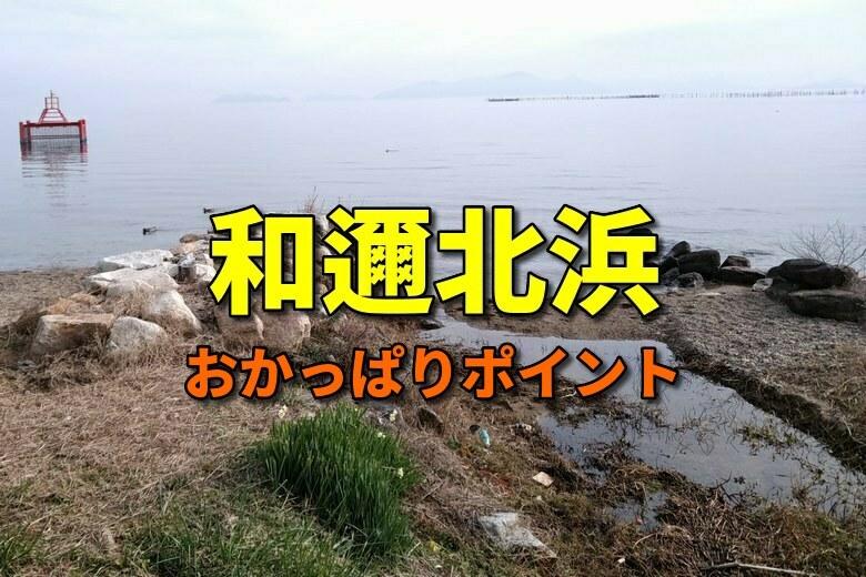 和邇北浜のおかっぱりバス釣りポイント
