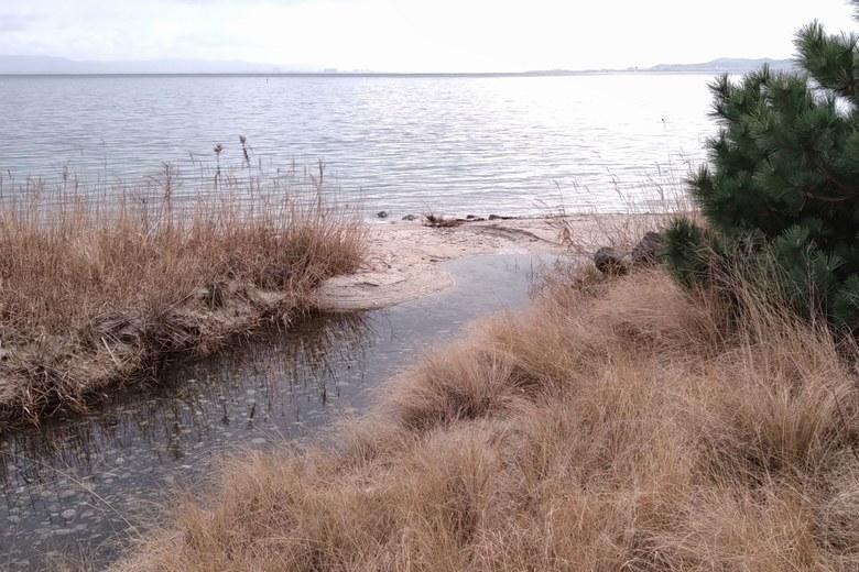 比良川の隣に流れ込む水路の水