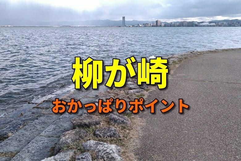 柳が崎のおかっぱりバス釣りポイント