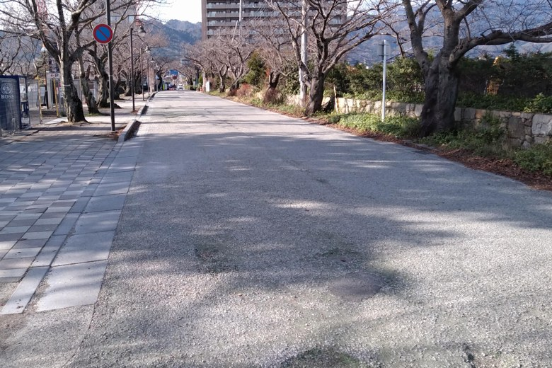 柳が崎のびわ湖大津館の前の道