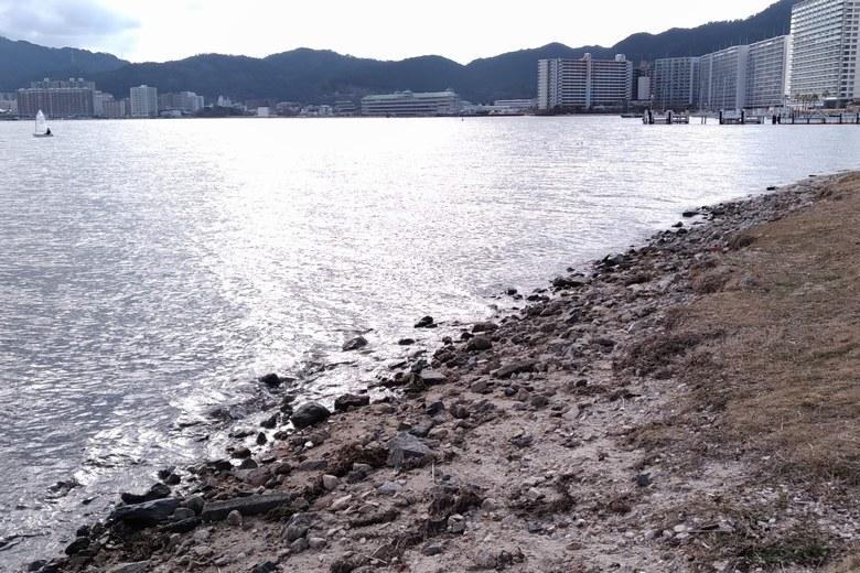 柳が崎の、石が多い南岸