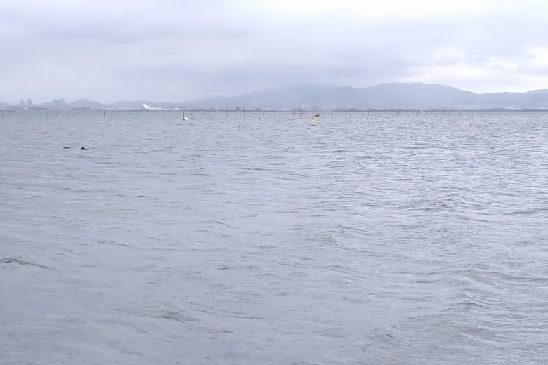 柳川河口の沖にあるエリと黄色のブイ