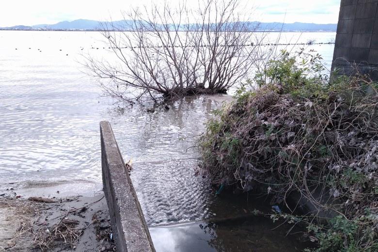 四ツ谷湖岸緑地の流れ込み