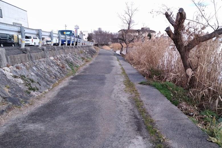 四ツ谷のコンクリート護岸は道路と距離が近い