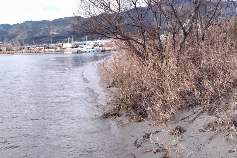 四ツ谷川の河口から見た南の岸辺