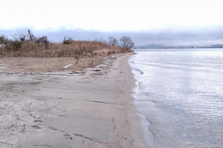四ツ谷川河口へつづく砂浜