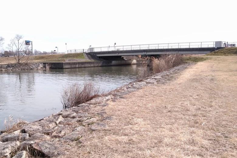 赤野井1の北にある新守山川の河口