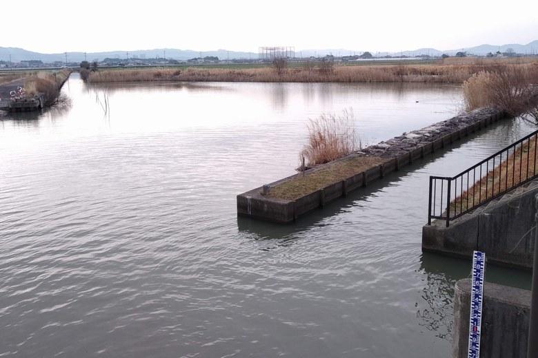 赤野井ワンドの裏にある水路