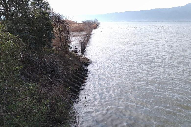 河口の南端と杭