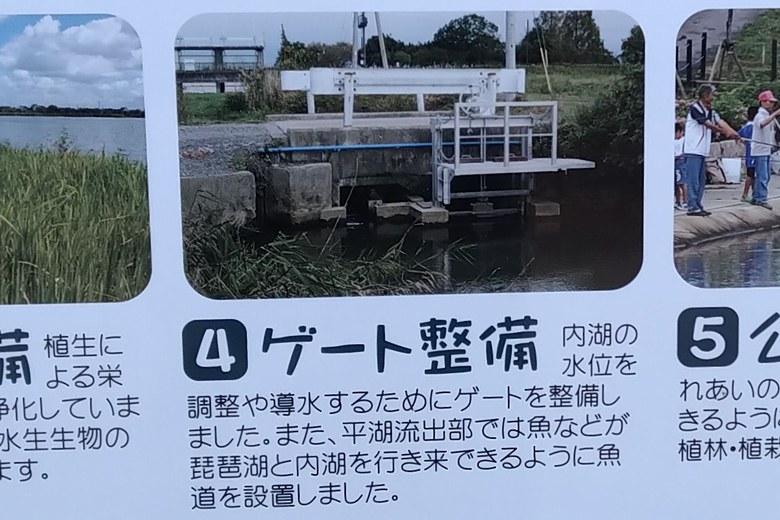 水路のゲートと魚道の説明