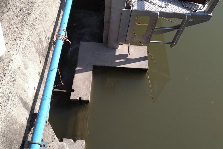 ゲートにある魚道